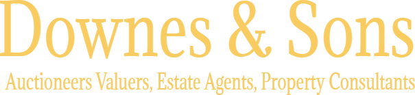 Downes & Sons Auctioneers