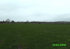 Brideswell, Co. Roscommon., ,Agricultural Land,For Sale,1025