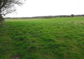 Cloonoghill, Co. Roscommon., ,Agricultural Land,Sold,1032