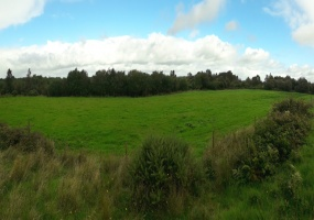 Moate, Co. Westmeath., ,Agricultural Land,For Sale,1036