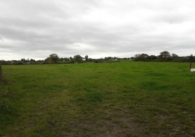 Glasson, Co. Westmeath., ,Agricultural Land,Sale Agreed,1037